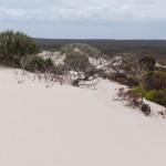 Sand wins the territory - Песок подминает под себя все больше континента