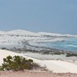 White sands - Белые пески