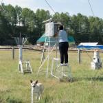 Weather station at work ~ Метеостанция в работе
