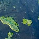 Tiny island ~ Крошечный остров