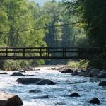 Cold mountain stream ~ Холодный горный ручей