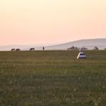Early morning at the Kharantsy airport ~ Раннее утро на аэродроме Харанцы