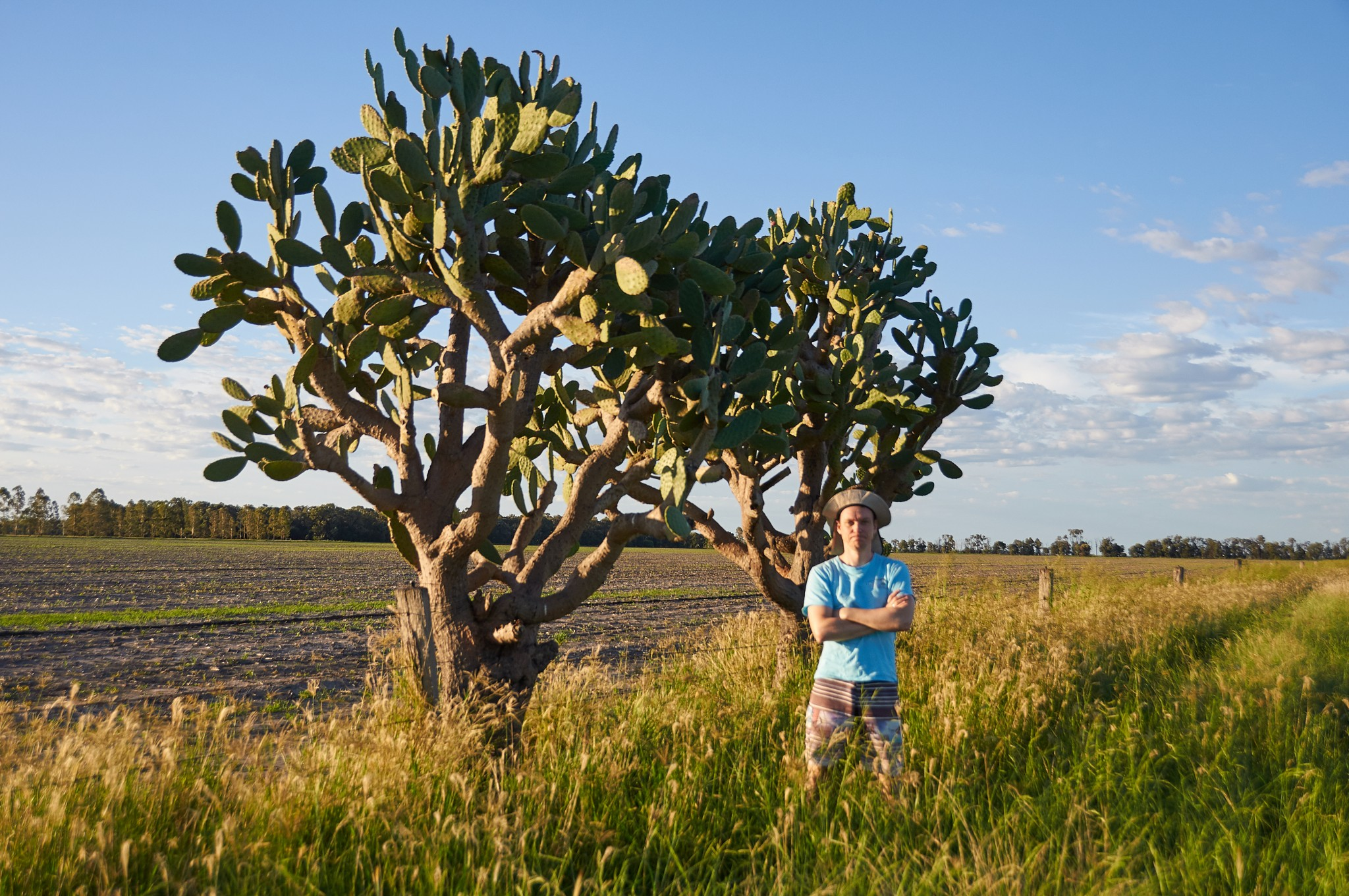 Andrey and local cacti ~ Андрюха и местные кактусы