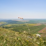 At the top of the Yutsa ~ На вершине Юцы